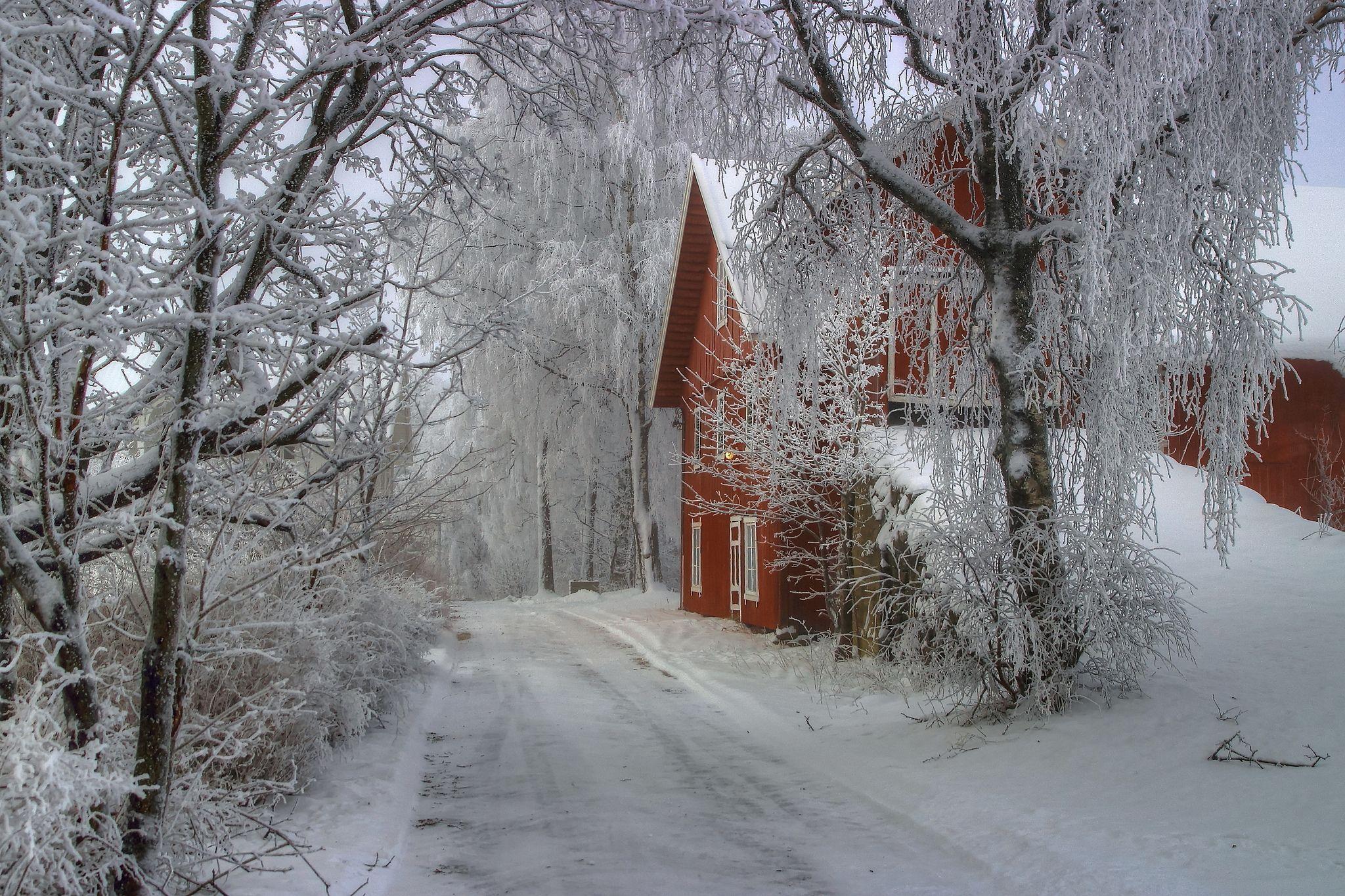 belles images de paysages hiver page 3. Black Bedroom Furniture Sets. Home Design Ideas